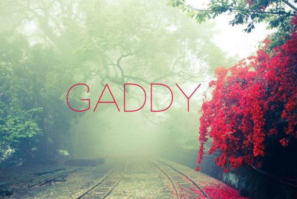 Print on Demand: Gaddy Sans Serif Font By in.maddesigns
