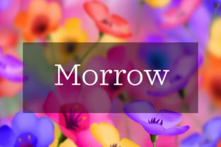Morrow Font By in.maddesigns