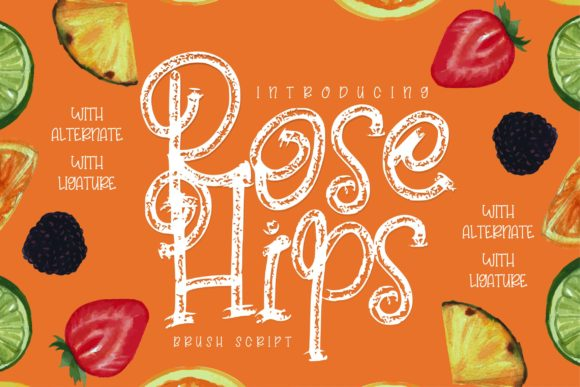 Print on Demand: Rose Hips Script & Handwritten Font By Vunira