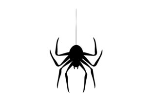 Spider Hanging from Thread Craft Design By Creative Fabrica Crafts