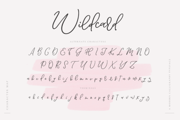 Print on Demand: Wildcard Script & Handwritten Font By Ayca Atalay - Image 12