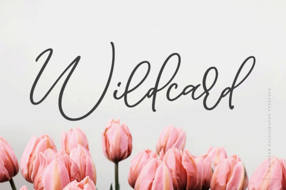 Print on Demand: Wildcard Script & Handwritten Font By Ayca Atalay - Image 1