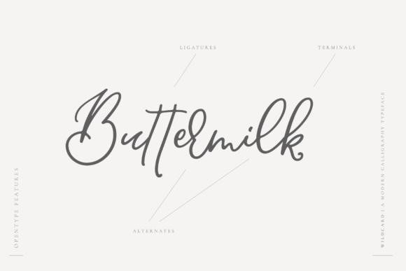 Print on Demand: Wildcard Script & Handwritten Font By Ayca Atalay - Image 10