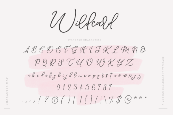 Print on Demand: Wildcard Script & Handwritten Font By Ayca Atalay - Image 11