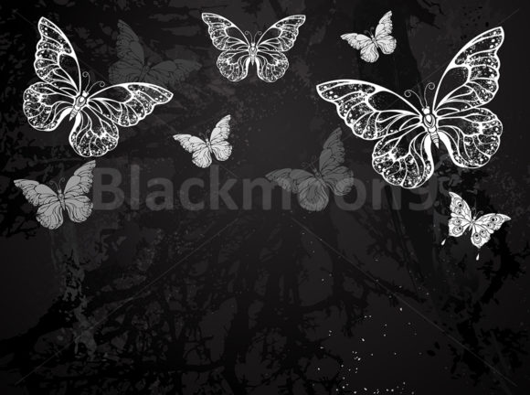 Butterflies Drawn in Chalk Graphic Illustrations By Blackmoon9