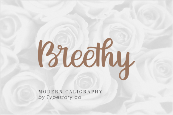 Print on Demand: Breethy Script & Handwritten Font By Typestory - Image 1
