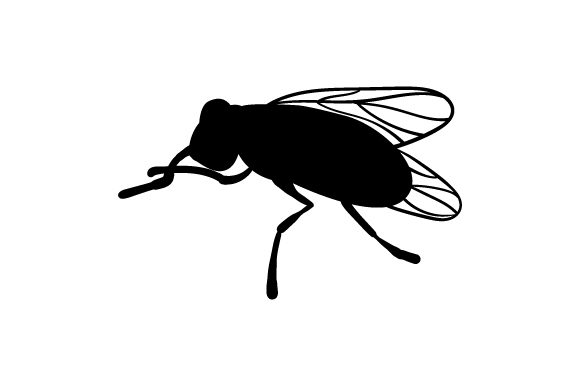 Download Free House Fly Silhouette Svg Cut File By Creative Fabrica Crafts for Cricut Explore, Silhouette and other cutting machines.