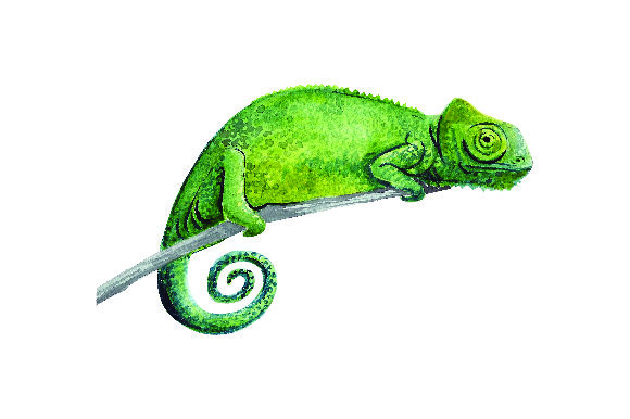 Chameleon - Watercolor Animals Craft Cut File By Creative Fabrica Crafts - Image 1