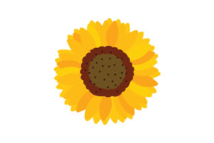 Sunflower Thanksgiving Craft Cut File By Creative Fabrica Crafts