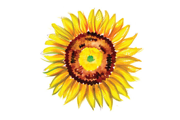 Sunflower in Gouache Style Thanksgiving Craft Cut File By Creative Fabrica Crafts