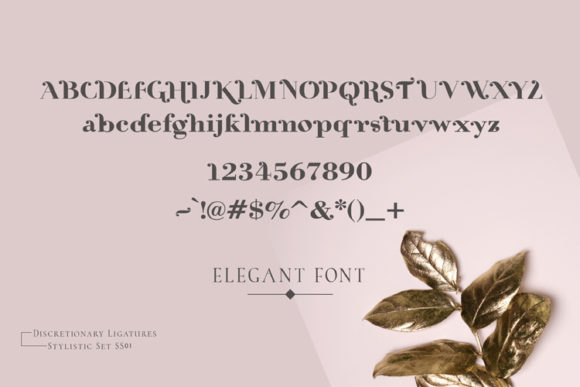 Rossa Font By ed.creative Image 4