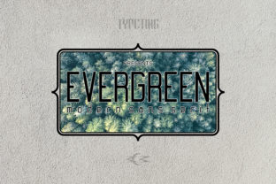 Evergreen Font By Typeting Studio