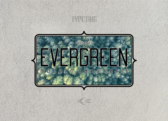 Print on Demand: Evergreen Sans Serif Font By Typeting Studio