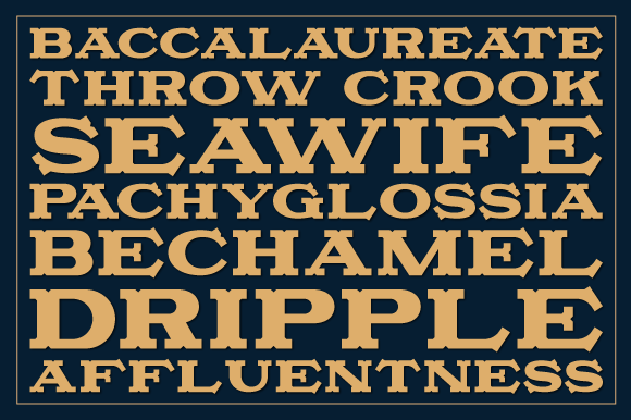 Camonflet Font By TanveerType Image 3