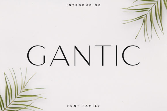 Print on Demand: Gantic Sans Serif Font By RC graphics