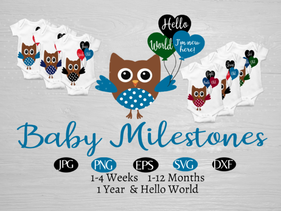 Print on Demand: Baby Owl 1 Year of Baby Milestones Graphic Illustrations By CapeAirForce - Image 1