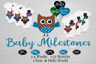 Baby Owl 1 Year of Baby Milestones Graphic By capeairforce