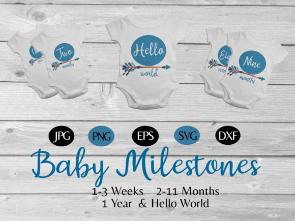 Print on Demand: Babys' Bundle of 1 Year Milestones Graphic Illustrations By CapeAirForce - Image 1
