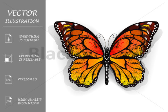 Download Free Orange Butterfly Monarch Graphic By Blackmoon9 Creative Fabrica for Cricut Explore, Silhouette and other cutting machines.