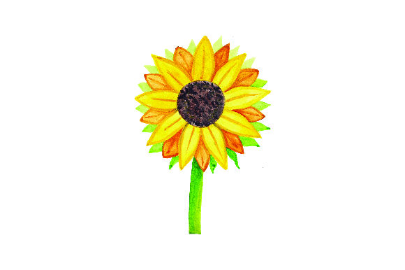Sunflower Watercolor Thanksgiving Craft Cut File By Creative Fabrica Crafts