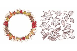 Print on Demand: Autumn Leaves Set Graphic Illustrations By zoyali