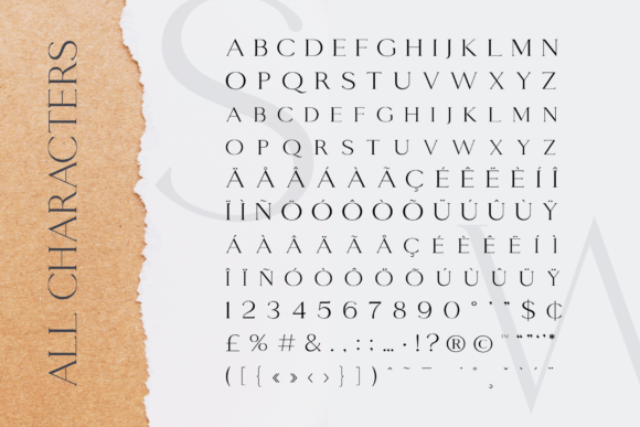 Print on Demand: Giveaway Serif Font By sensatype - Image 11
