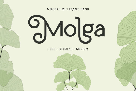 Print on Demand: Molga Display Font By creativemedialab - Image 1