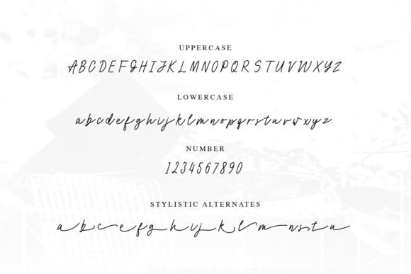 Print on Demand: Cocoharper Script & Handwritten Font By creativemedialab - Image 6