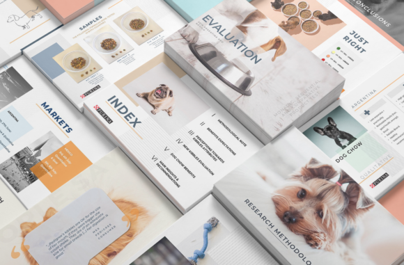 Print on Demand: Clean PowerPoint Presentation Graphic Presentation Templates By Samis Lapin
