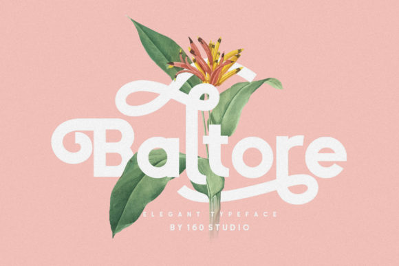 Print on Demand: Baltore Sans Serif Font By 160 Studio - Image 1