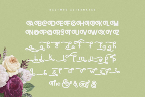 Print on Demand: Baltore Sans Serif Font By 160 Studio - Image 8