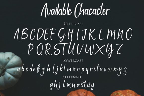 Print on Demand: Patylistic Script & Handwritten Font By Gilar Studio - Image 8