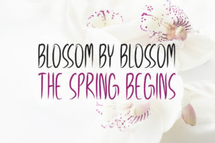 Print on Demand: Spring Season Display Font By Instagram Fonts 2