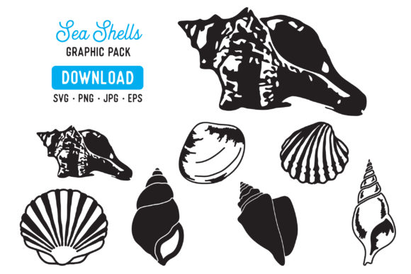 Print on Demand: Sea Shells Vector Graphic Illustrations By The Gradient Fox