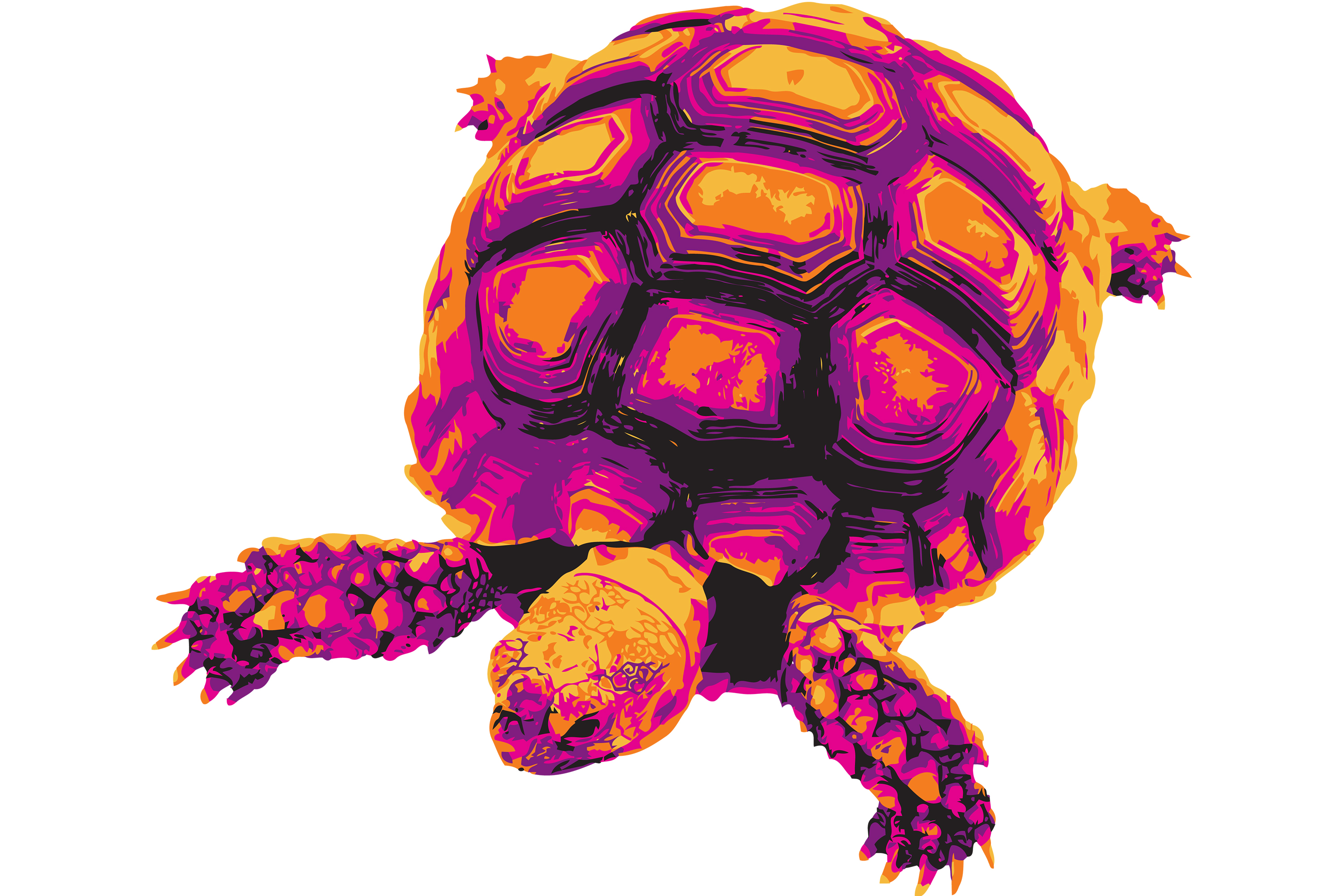 Download Free Vectorized Turtle In Halloween Colors Grafico Por Vessto for Cricut Explore, Silhouette and other cutting machines.