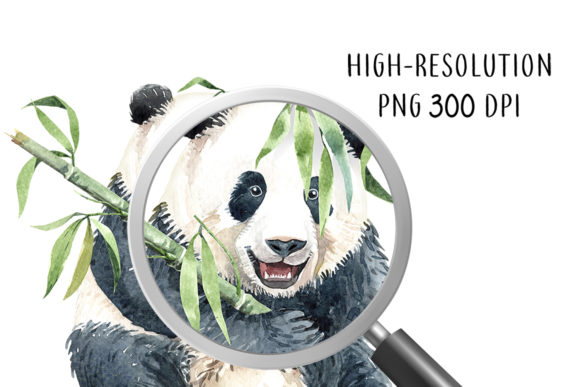 Print on Demand: Panda Watercolor Animal Clip Art Graphic Illustrations By SapG Art - Image 4
