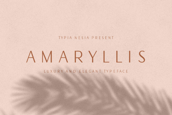 Print on Demand: Amaryllis Sans Serif Font By Typia Nesia