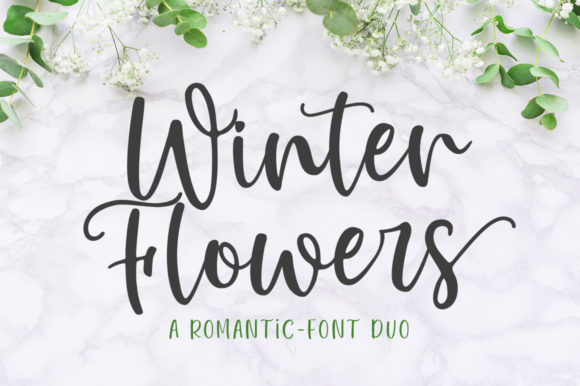 Print on Demand: Winter Flowers Script & Handwritten Font By Great Studio