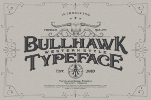 Bullhawk Display Font By typealiens