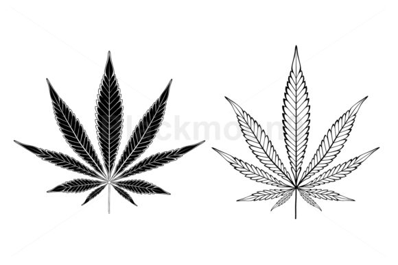 Monochrome Cannabis Leaves Graphic Illustrations By Blackmoon9