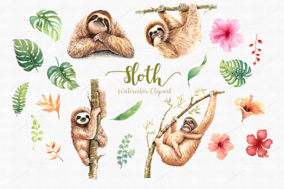 Print on Demand: Sloth. Animals Watercolor Cliparts. Graphic Illustrations By SapG Art - Image 2