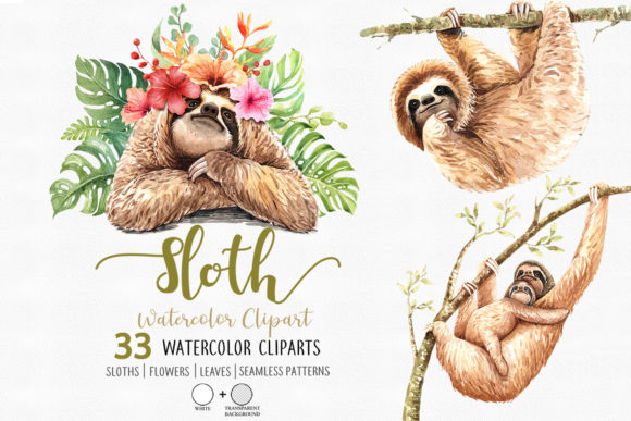 Print on Demand: Sloth. Animals Watercolor Cliparts. Graphic Illustrations By SapG Art