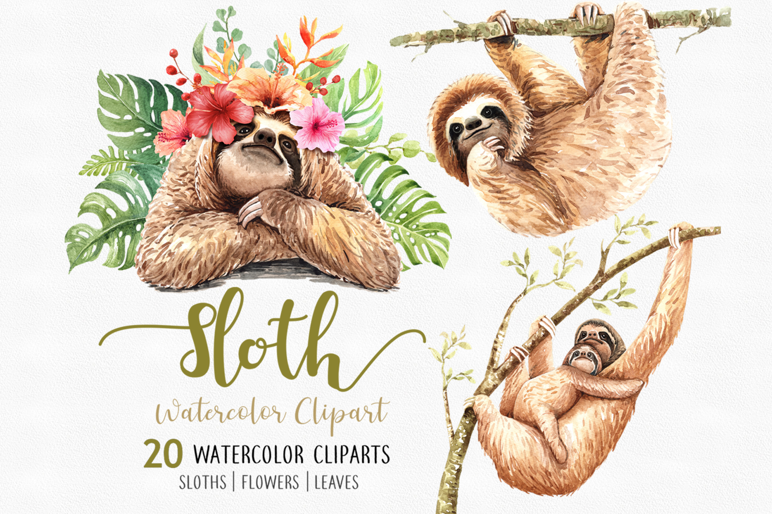 Download Free Sloth Animals Watercolor Clip Art Graphic By Sapg Art for Cricut Explore, Silhouette and other cutting machines.