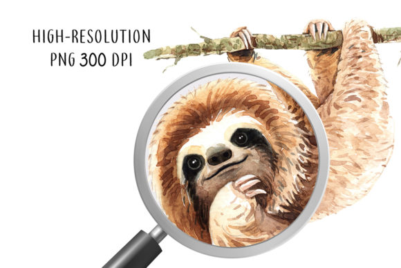 Print on Demand: Sloth. Animals Watercolor Cliparts. Graphic Illustrations By SapG Art - Image 7