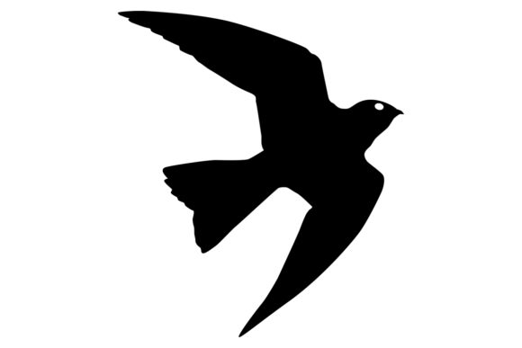 Download Free Nighthawk Bird Silhouette Graphic By Idrawsilhouettes Creative for Cricut Explore, Silhouette and other cutting machines.