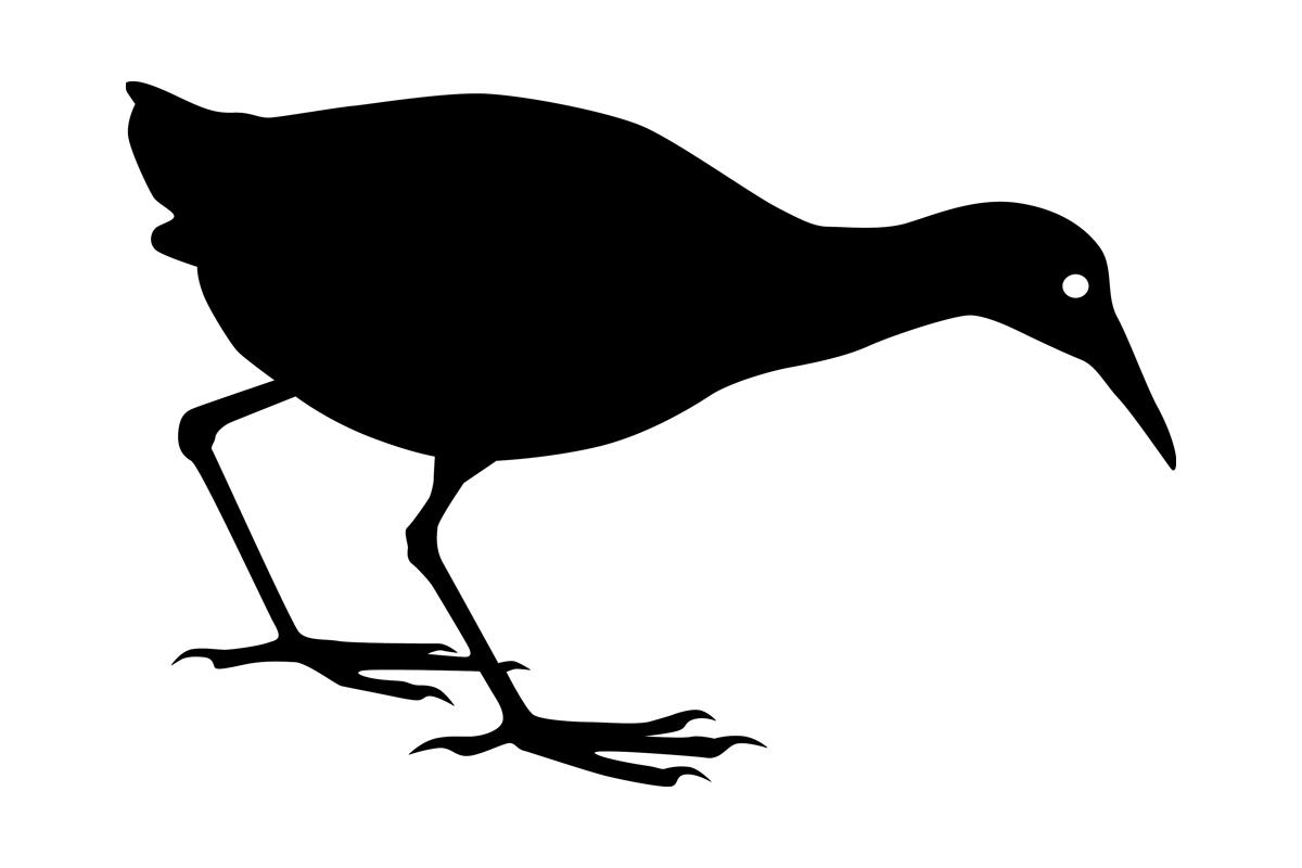 Download Free Spotted Rail Bird Silhouette Graphic By Idrawsilhouettes for Cricut Explore, Silhouette and other cutting machines.