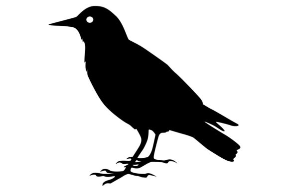 Download Free Starling Bird Silhouette Graphic By Idrawsilhouettes Creative for Cricut Explore, Silhouette and other cutting machines.