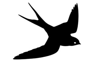 Download Free Swallow Bird Silhouette Graphic By Idrawsilhouettes Creative for Cricut Explore, Silhouette and other cutting machines.