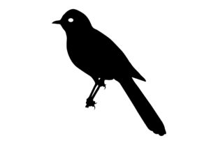 Download Free Thrush Bird Silhouette Graphic By Idrawsilhouettes Creative for Cricut Explore, Silhouette and other cutting machines.