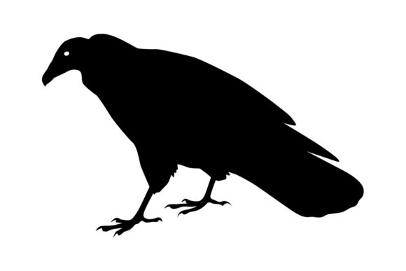 Download Free Turkey Vulture Bird Silhouette Graphic By Idrawsilhouettes for Cricut Explore, Silhouette and other cutting machines.